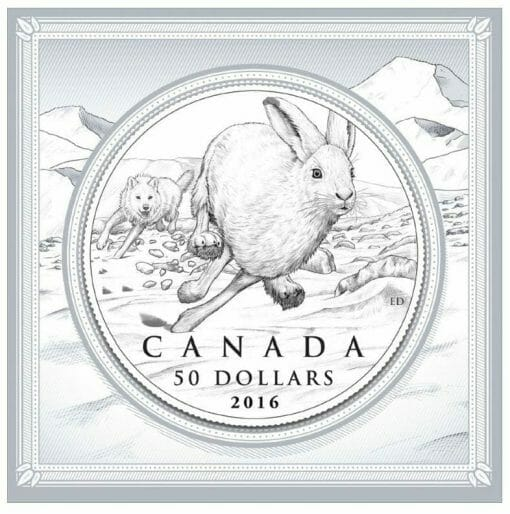2016 $50 Hare 1/2oz .9999 Silver Coin - Royal Canadian Mint 3