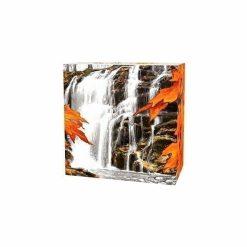 2014 $20 Autumn Falls 1oz .9999 Silver Coin - Royal Canadian Mint 7