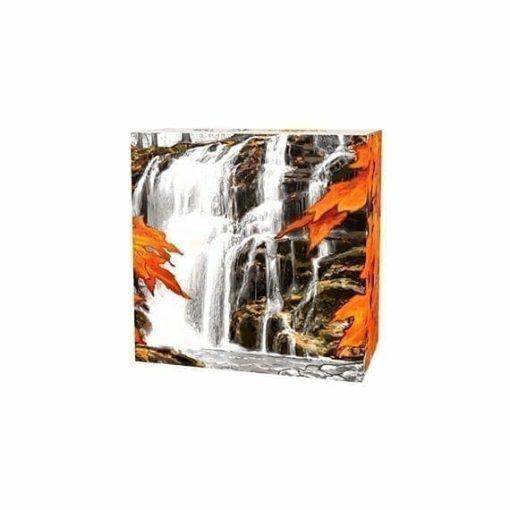 2014 $20 Autumn Falls 1oz .9999 Silver Coin - Royal Canadian Mint 4