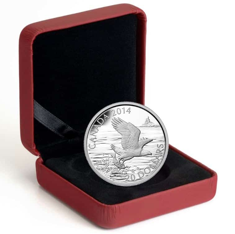 2014 Bald Eagle With Fish $20 1oz .9999 Silver Proof Coin 3