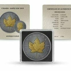 2019 Maple Leaf 1oz Silver Coin - Antique Gold Edition 5