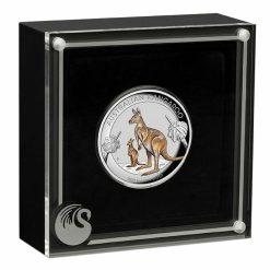 2020 Australian Kangaroo 1oz .9999 Coloured High Relief Silver Coin 8