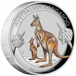 2020 Australian Kangaroo 1oz .9999 Coloured High Relief Silver Coin 6